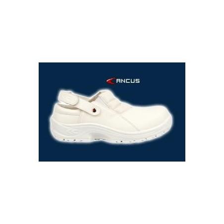 Calzatura Cofra Ancus Sb A E C/Cinturino