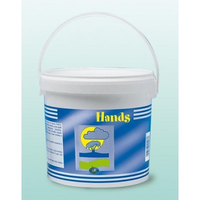 Pasta Lavamani Abras.5Lt Hands 103